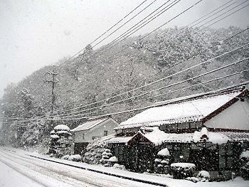 大雪の日-1
