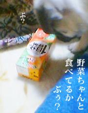 080130_3.jpg