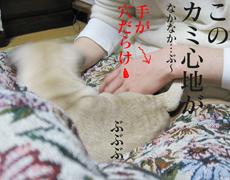 080131_05.jpg