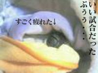 080209_4.jpg