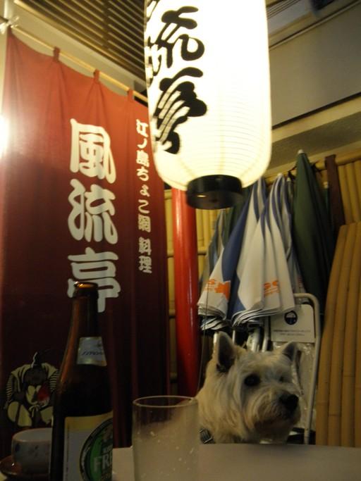 リープ201106大磯 015s