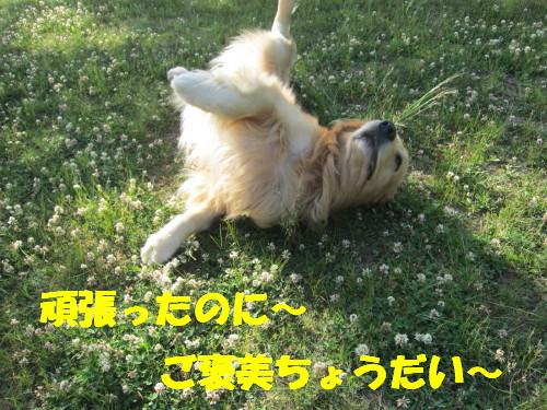 IMG_8500.jpg