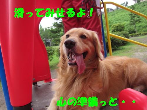 IMG_8541.jpg