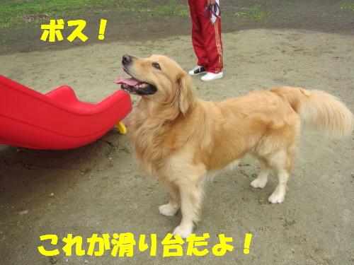 IMG_8546.jpg