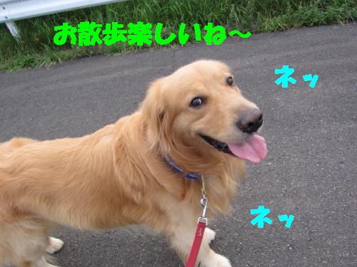 IMG_8688.jpg
