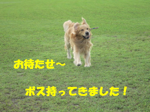 IMG_8773.jpg
