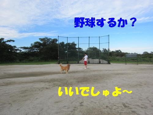 IMG_8776.jpg