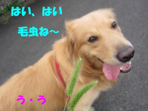 IMG_8802.jpg