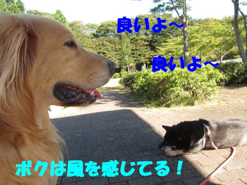 IMG_8884.jpg