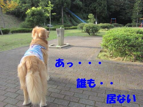 IMG_8902.jpg