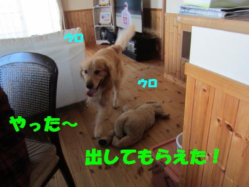 IMG_8934.jpg