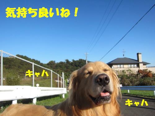 IMG_8989.jpg
