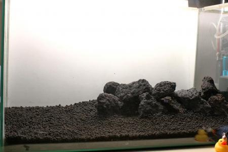 溶岩石に変更