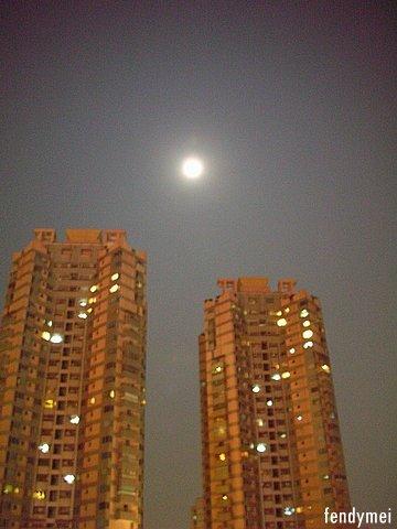 moon061008.jpg