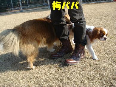 20080113_2.jpg