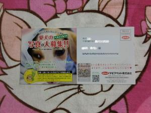 004繝シ繧ウ繝斐・_convert_20110622213812