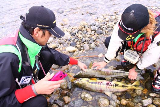 2011 荒川サケ有効利用釣獲調査 荒川鮭釣り 甲駿渓遊会