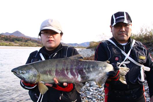 2011 荒川サケ有効利用釣獲調査 荒川鮭釣り