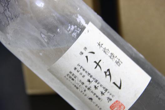 2011爆弾ハナタレ 新潟 飲む