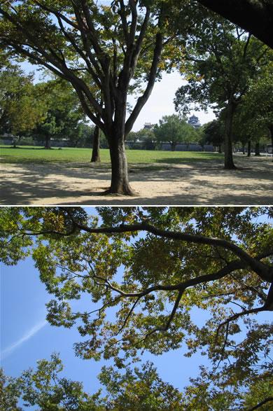 二の丸公園は快適でした