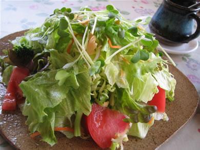 新鮮野菜!
