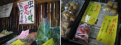 新鮮野菜の無人販売