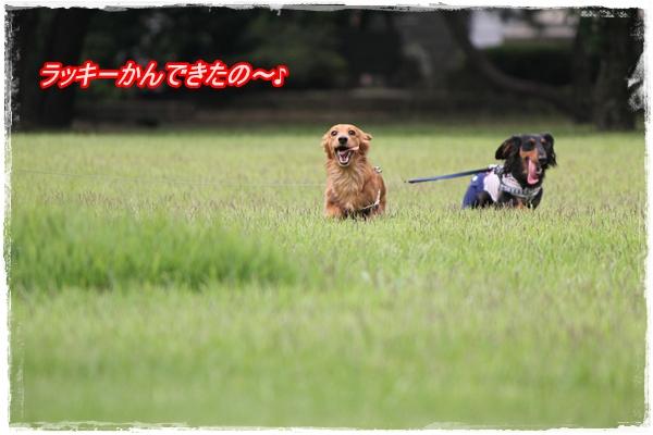 IMG_4318-1.jpg