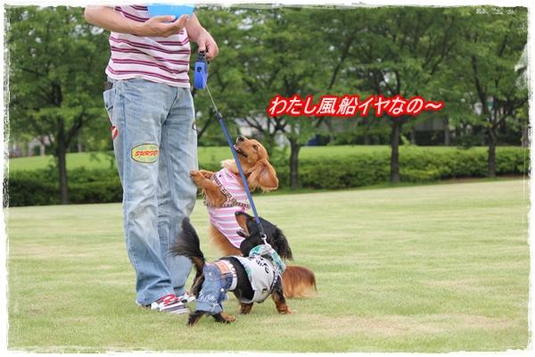 IMG_4872-1.jpg