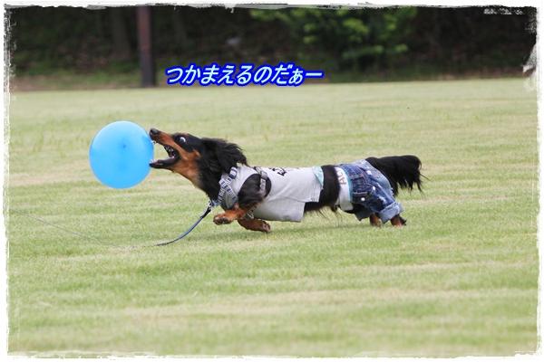 IMG_4914-1.jpg