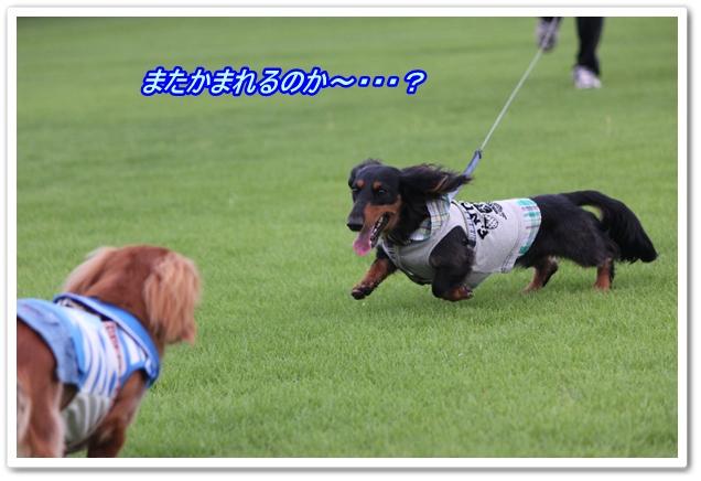 IMG_6059-1.jpg