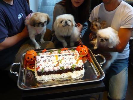 around_cake.jpg