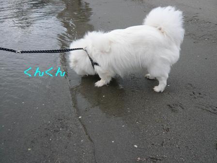 bentenjima_beach.jpg