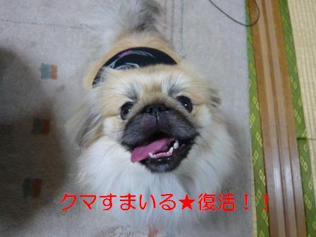 kumasmile_wave.jpg