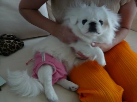 pink_pants.jpg