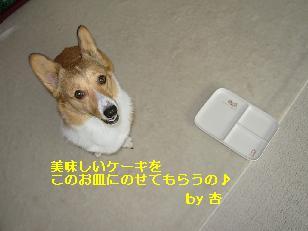 20070516122542.jpg