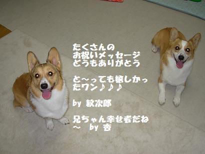 20070820173829.jpg