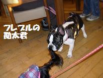 20071014113845.jpg