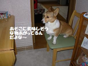 20071017130451.jpg