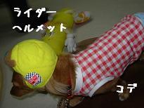 20080128175716.jpg