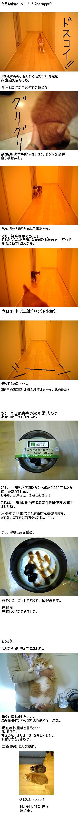 20080131日記