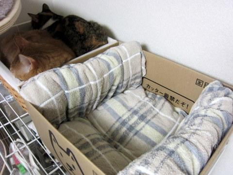 new猫ベッド