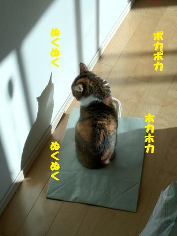 先手必勝 (2)
