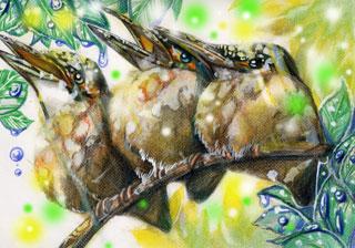 光の中の翡翠三羽WEB