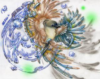 はばたく鳥水と風WEB