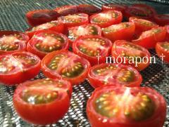 120315ドライトマト-3
