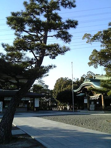 20080126-8.jpg