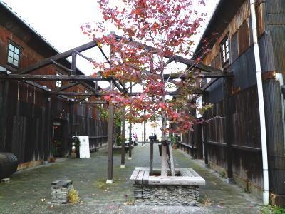 11-11-takamatsu-5.jpg
