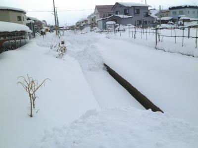 12-27-yuki-1.jpg