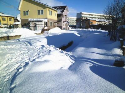 2012-1-6-yuki.jpg