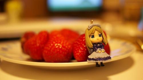 ベラさんと苺